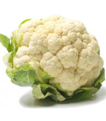 Karfiol skorý Ingloory - Brassica oleracea - semiačka - 20 ks