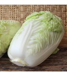 Kapusta pekinská Grannat - Brassica pekinensis - semiačka - 200 ks