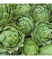 Artičoka zelená Grosse von Laon - Cynara scolymus - semiačka - 20 ks