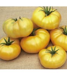 Paradajka Azoychka - Lycopersicon esculentum - Semená paradajok - 8 ks