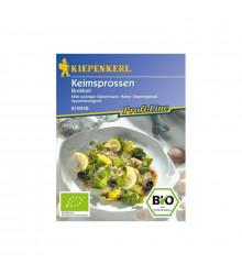 Semená na klíčky - Bio brokolica - Kiepenkerl - Semená - 20 g