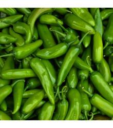 Chilli Veľký Jim - Semená Chilli - Papričky - 7 ks