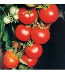Paradajka Tamina - Solanum lycopersicum - predaj semien - 20 Ks
