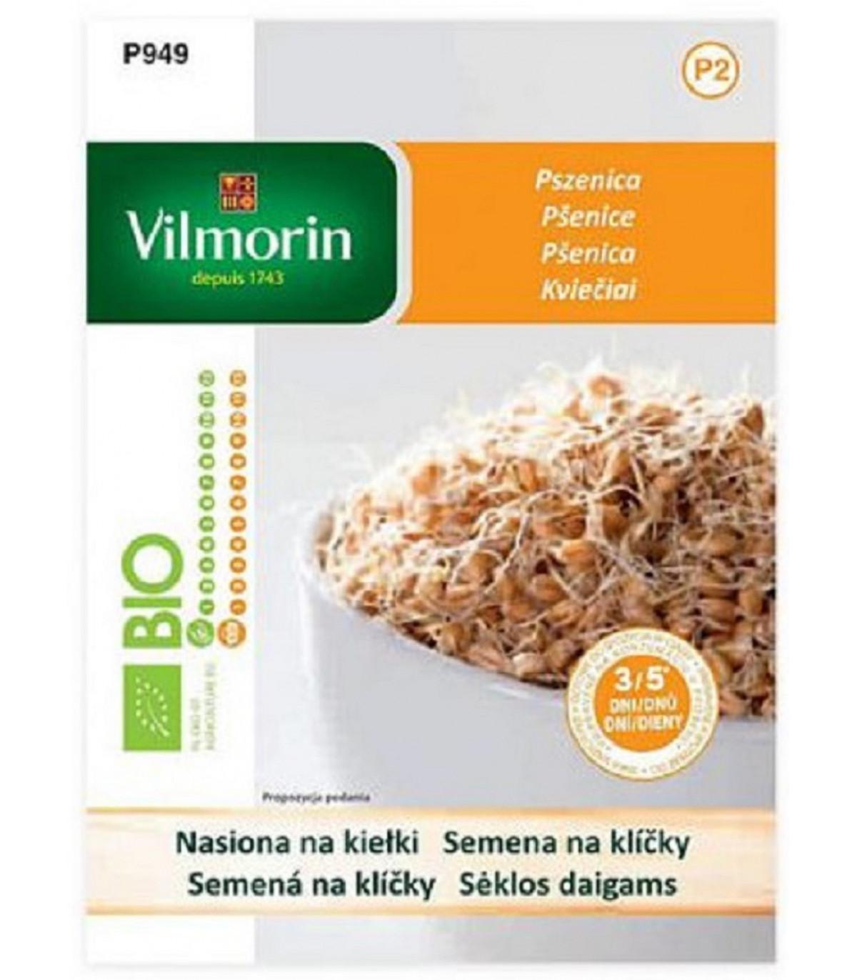 Bio semená na klíčky - Bio pšenica - semená - 40 g