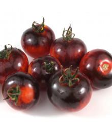 Bio semená rajčiak Black Zebra - Solanum lycopersicum - predaj semien - 7 ks