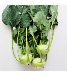 BIO kaleráb Noriko - BIO semiačka - Brassica oleracea convar. gongylodes- 80 ks