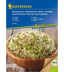 Bio Alfalfa - Lucerna - Kiepenkerl - Medicago sativa - bio semená na klíčky - 40 g