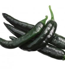 Chilli - Pasilla Bajio - Semená chilli - Papričky - 7 ks