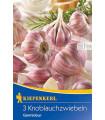Sadbový cesnak Germidour - Allium sativum - 3 ks - Nepaličák