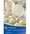 Cibuľa sadzačka Silvermoon - Allium cepa - cibuľky - 50 ks
