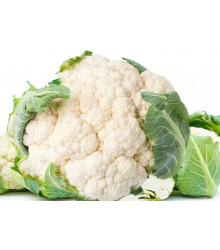 BIO Karfiol skorý Odysseus - Brassica oleracea - bio semienka - 20 ks