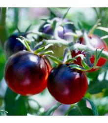 Paradajka - Čierne cherry - Semiačka - 6 ks