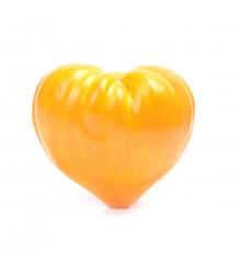 Paradajka - Oranžová jahoda - Semiačka - 6 ks
