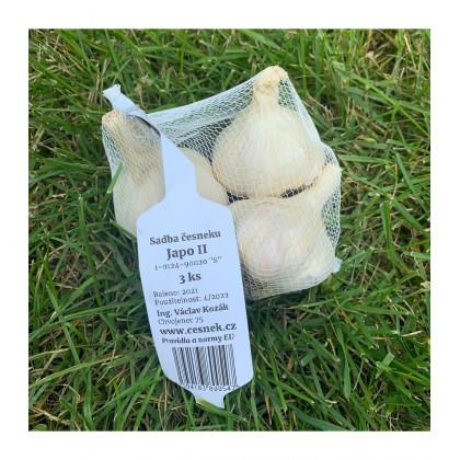 Sadbový cesnak Japo II - Allium sativum - nepaličiak - predaj cibulí cesnaku - 3 ks