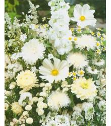 Letničky zmes - Záhradný sen v bielom - semiačka - 0,9 gr
