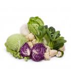 BIO hlúbová zelenina